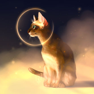 Фото Голубоглазая кошка в ореоле, by Martith