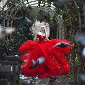 Фото Девушка в красном платье с длинными волосами стоит на аллее, где кружат голуби. Фотограф Margarita Kareva