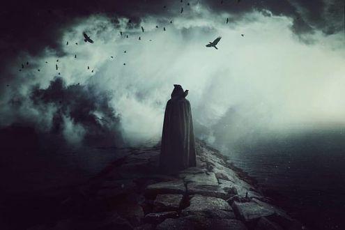 Фото Человек в длинном плаще с капюшоном с вороном на плече, by baxiaart