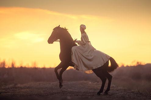 Фото Девушка на лошади. Фотограф Анюта Онтикова