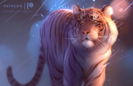 Фото Тигр под дождем, by Apofiss