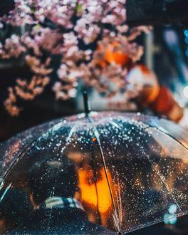 Фото Парень под зонтом в весенний дождь, by Thanai Manasathit