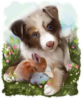Фото Щенок австралийской овчарки и два крольчонка, by Kajenna