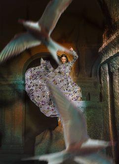 Фото Девушка в длинном платье стоит с поднятой рукой перед парящими перед ней птицами, фотограф Jvdas Berra