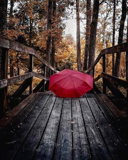 Фото Красный зонт лежит на деревянном мостике, by starrush