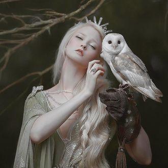 Фото Девушка с совой в руке. Фотограф A. M Lorek