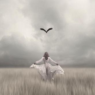 Фото Работа - научи меня летать, девушка стоит на поле и над ней парит птица. Фотограф mckay philip