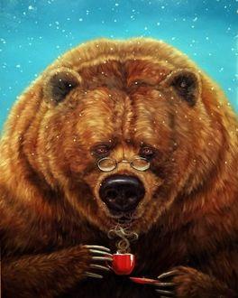 Фото Медведь с чашкой горячего чая, by luciaheffernan
