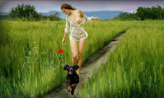 Фото Девушка идет по тропинке и перед ней бежит пес, by Элиз