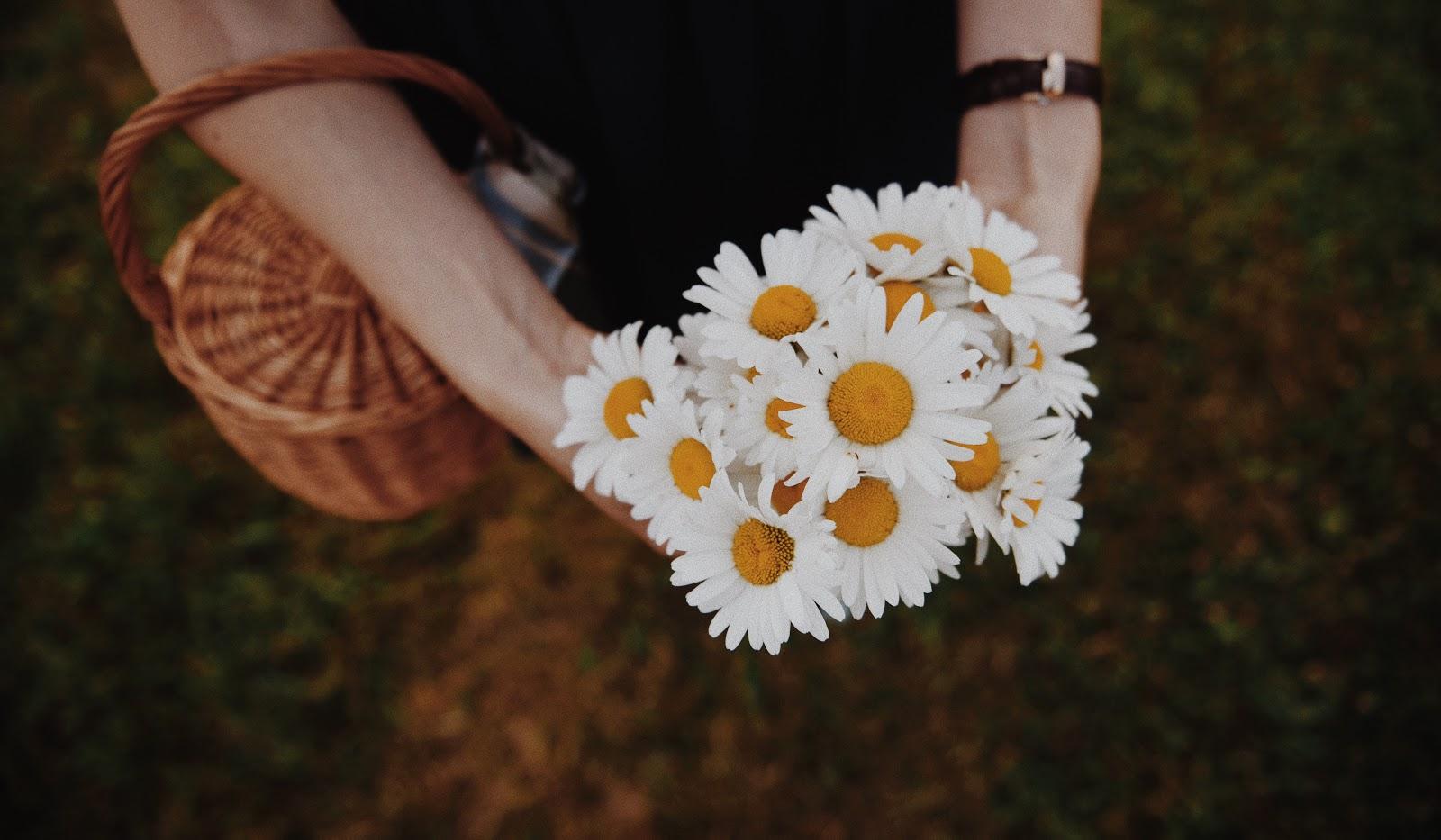 Фото В руках девушки ромашки, by Mateusz
