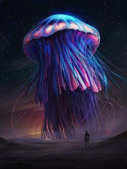 Фото Парень смотрит а огромную медузу в небе, by lorantart