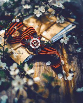 Фото Орден Красной Звезды на Георгиевской ленте, фотограф Татьяна Миронова