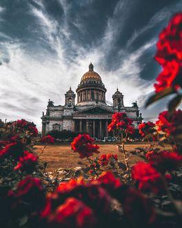 Фото Исаакиевский собор под облачным небом, на переднем плане цветы