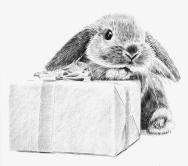 Фото Рисунок кролика который сидит с подарком. Автор Алексей Паршуков, alex_darkart