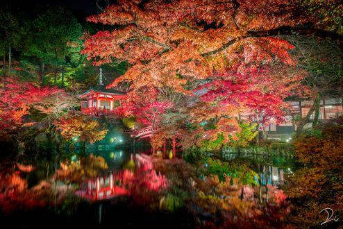 Фото Осенние деревья у озера