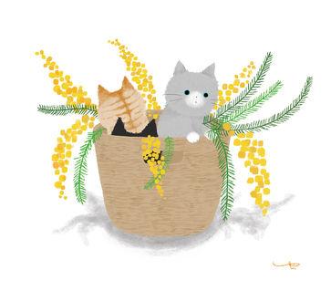 Три кота в цветочном горшке