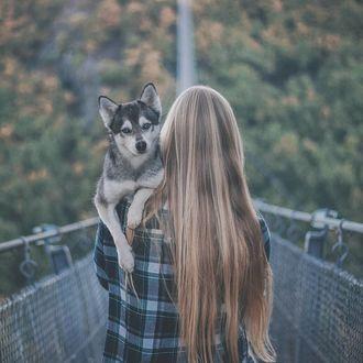Фото Девушка с собакой породы хаски на руках стоит к нам спиной, by myloveonpaws