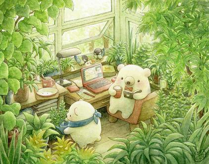 Фото Двое белых мишек в оранжерее