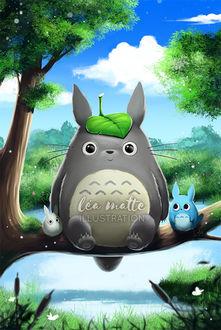 Фото Totoro / Тоторо и Chibi Totoro / Маленький Тоторо из аниме Мой сосед Тоторо / My Neighbor Totoro, by leamatte