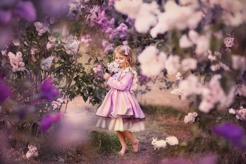 Фото Девочка стоит у цветов. Фотограф Митина Оксана