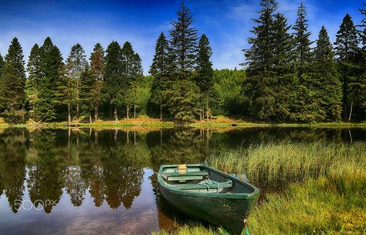 Фото Лодка, пришвартованная к зеленеющему берегу, by Hilda Murray