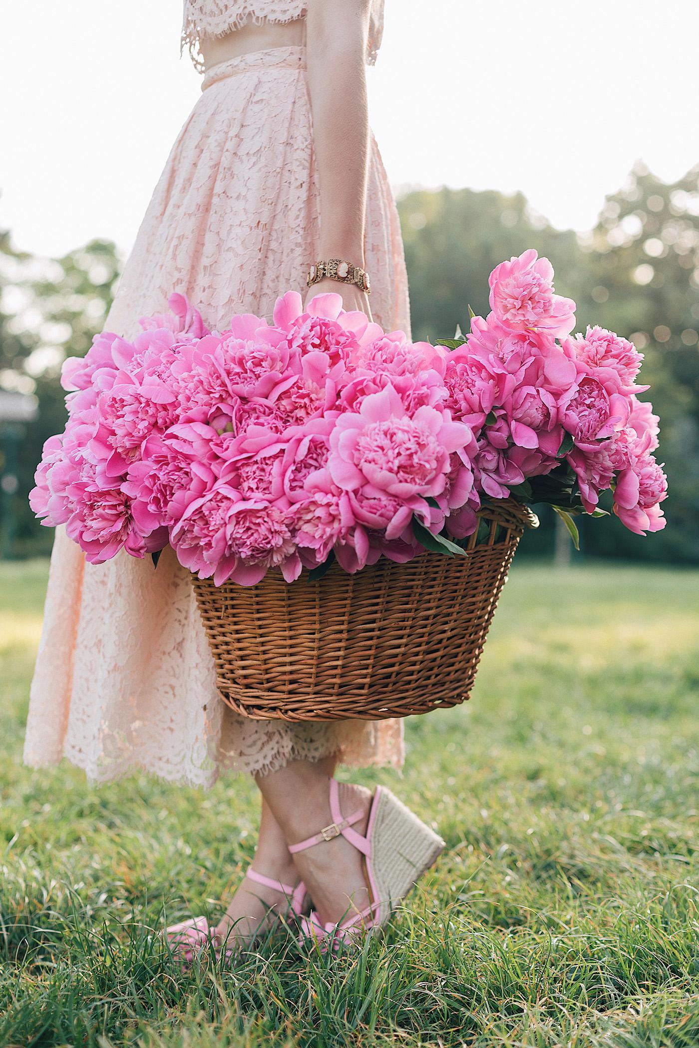 Девушка с розовыми пионами в корзине, by Andreea Balaban