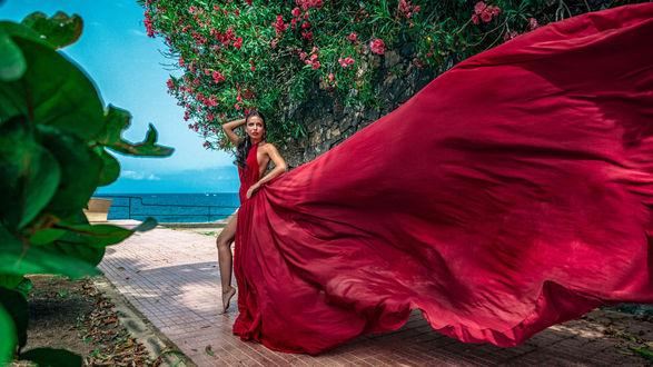 Фото Девушка в длинном красном платье стоит у цветущего дерева. Фотограф Илья Ткачев