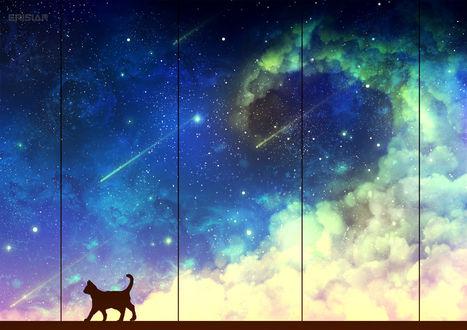Фото Черная кошка возле окна с видом на космос, by Erisiar