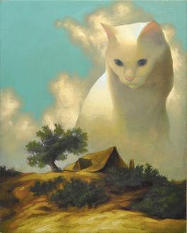 Фото Огромная белая кошка сидит у дома, by Megan Ellen MacDonald