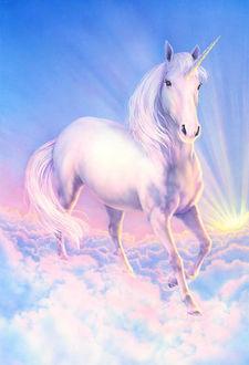 Фото Единорог стоящий на облаках