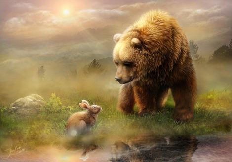 Фото Медведь и кролик смотрят друг на друга, by AlenaEkaterinburg