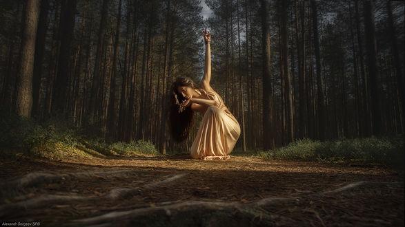 Фото Работа - Танцы запретного леса, девушка на дороге в лесу. . Фотограф Александр
