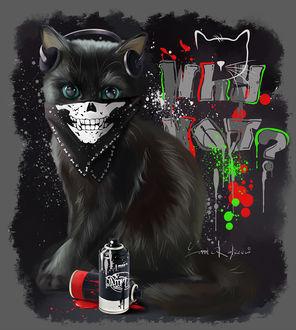 Фото Черный кот в бандане и наушниках сидит у стены, изрисованной графити, by Kajenna