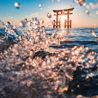Фото Ворота Тории в воде