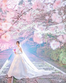 Фото Невеста с букетом цветом стоит под цветущей сакурой