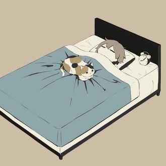Фото Мальчик спит в кровати под одеялом, на котором лежит кошка, рядом стоит будильник, by avogado6