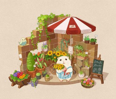 Хомячок и его цветочная лавка