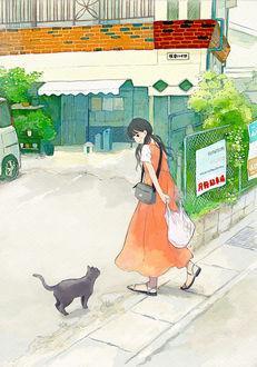 Фото Девушка смотрит на черную кошку