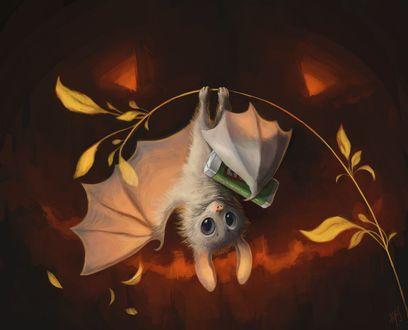 Фото Летучая мышка с шоколадкой висит на веточке с листьями, позади нее светильник Джека, by Himmis