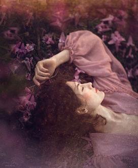 Фото Девушка лежит в цветах, фотограф Jessica Drossin