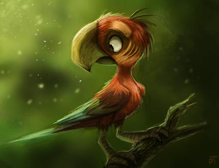 Фото Попугай на ветке, by Cryptid-Creations