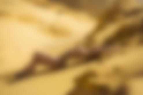 Фото Обнаженная модель Яна Арбенина лежит на песке, фотограф Stakis Laus