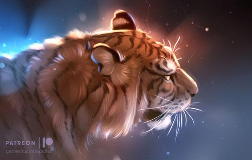 Фото Тигр на фоне с созвездиями, by Apofiss