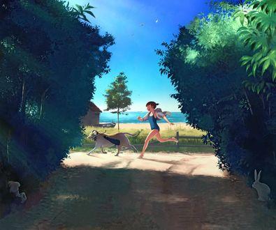 Фото Девушка бежит за собакой