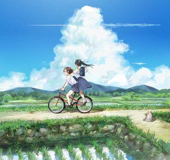 Фото Школьницы едут на велосипеде