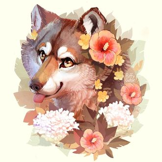 Фото Волк в окружении цветов, by PuffyGator