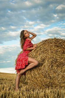 Фото Модель Ананда Дубовская в красном платье стоит у валуна сена, фотограф Дмитрий Медведь