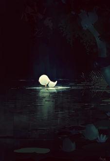 Фото Одинокий утенок, by PascalCampion