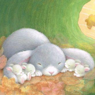 Фото Спящий кролик и крольчата, by Alison Edgeson