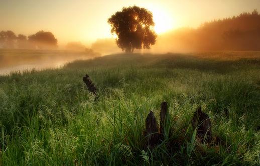 Фото Работа - Густой туман окутал берег. Фотограф Виктор Тулбанов